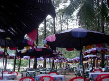 Under the trees by the beach at Nai Harn