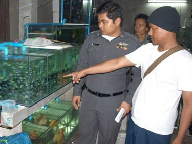 Inside the secret aquarium used by the alleged Phuket poacher