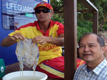 Phuket jellyfish researcher Dr Somchai Bussarawit, on a recent study tour with a deadly ''boxie'' in Australia.  Dr Somchai is now based in Bangkok