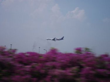 A Thai Airways flight comes in to land at Bangkok's Suvarnabhumi Airport