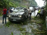Phuket Storms Topple Tree, Two Hurt: Traffic Chaos in Weather Warning