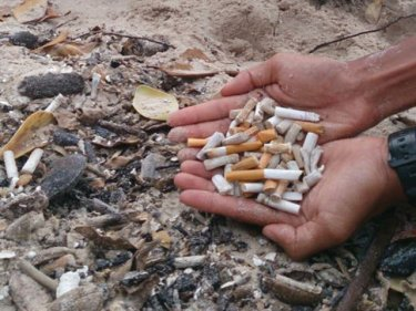 Careless smokers are adding to the rapid deterioration of prime natural sites