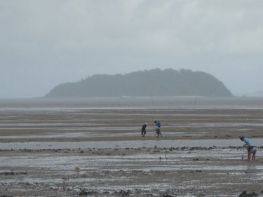 Bleak weather fails to stop people hunting seafood off Phuket City