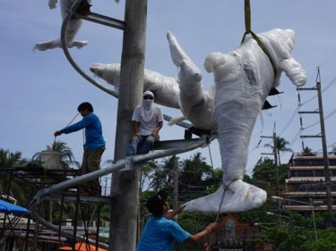 Dolphins should be celebrated not kept in captivity on Phuket